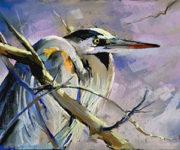 Banner for Bird Art Series