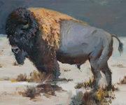 Banner for Buffalo Art Series