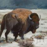 Buffalo I by Jerry Hancock